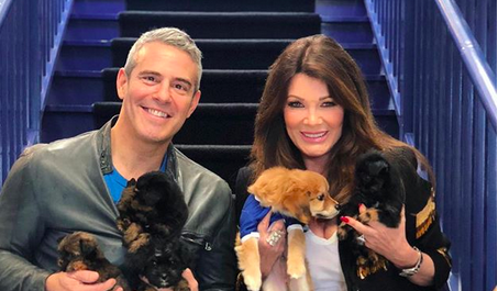 'RHOBH' star Lisa Vanderpump Instagram