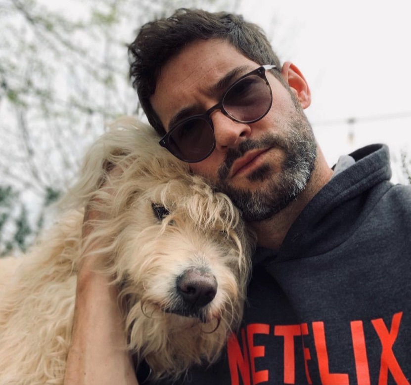 Lucifer Season 5: Tom-Ellis-Lucifer-Morningstar-Lucifer-Netflix