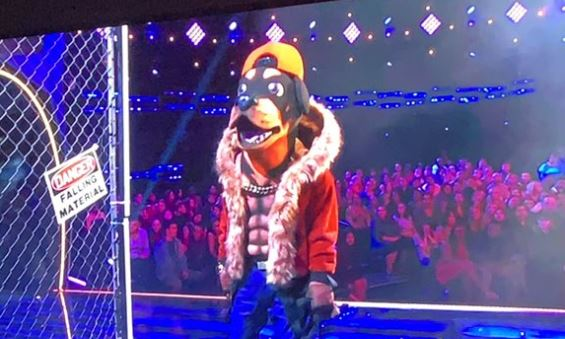 Masked Singer from Twitter