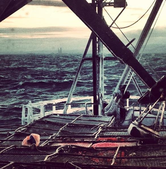 Deadliest Catch, Crab Fishing-https://www.instagram.com/p/WNU236yA6O/