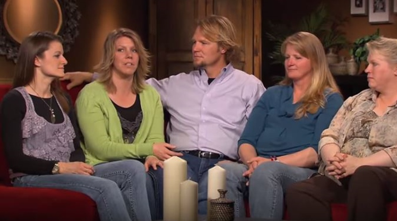 sister wives join gwen brown for polar express adventure