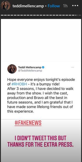 teddi mellencamp instagram stories part 2