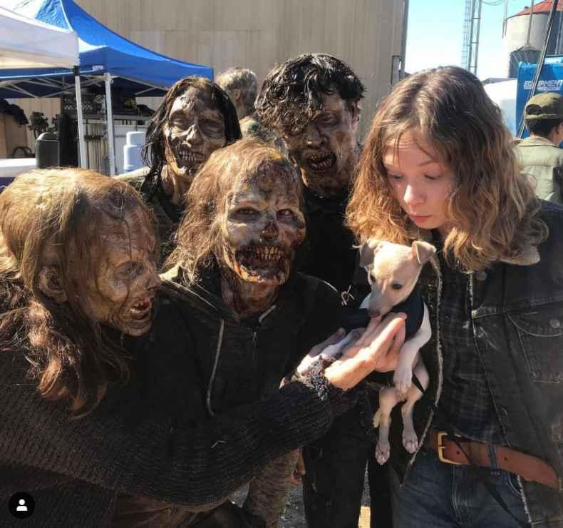 Fear the Walking Dead - walkers like puppies