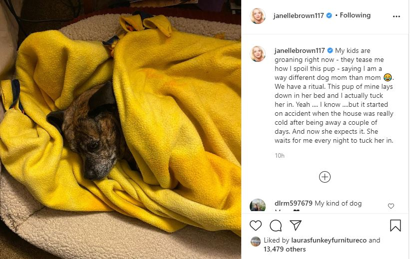 Janelle Brown treats her dogs better than her kids