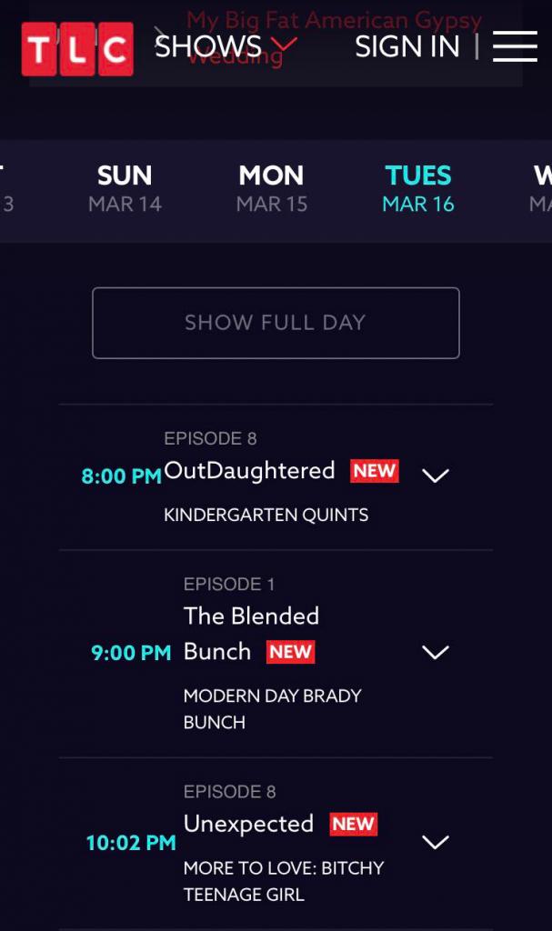 TLC Network Website Screenshot