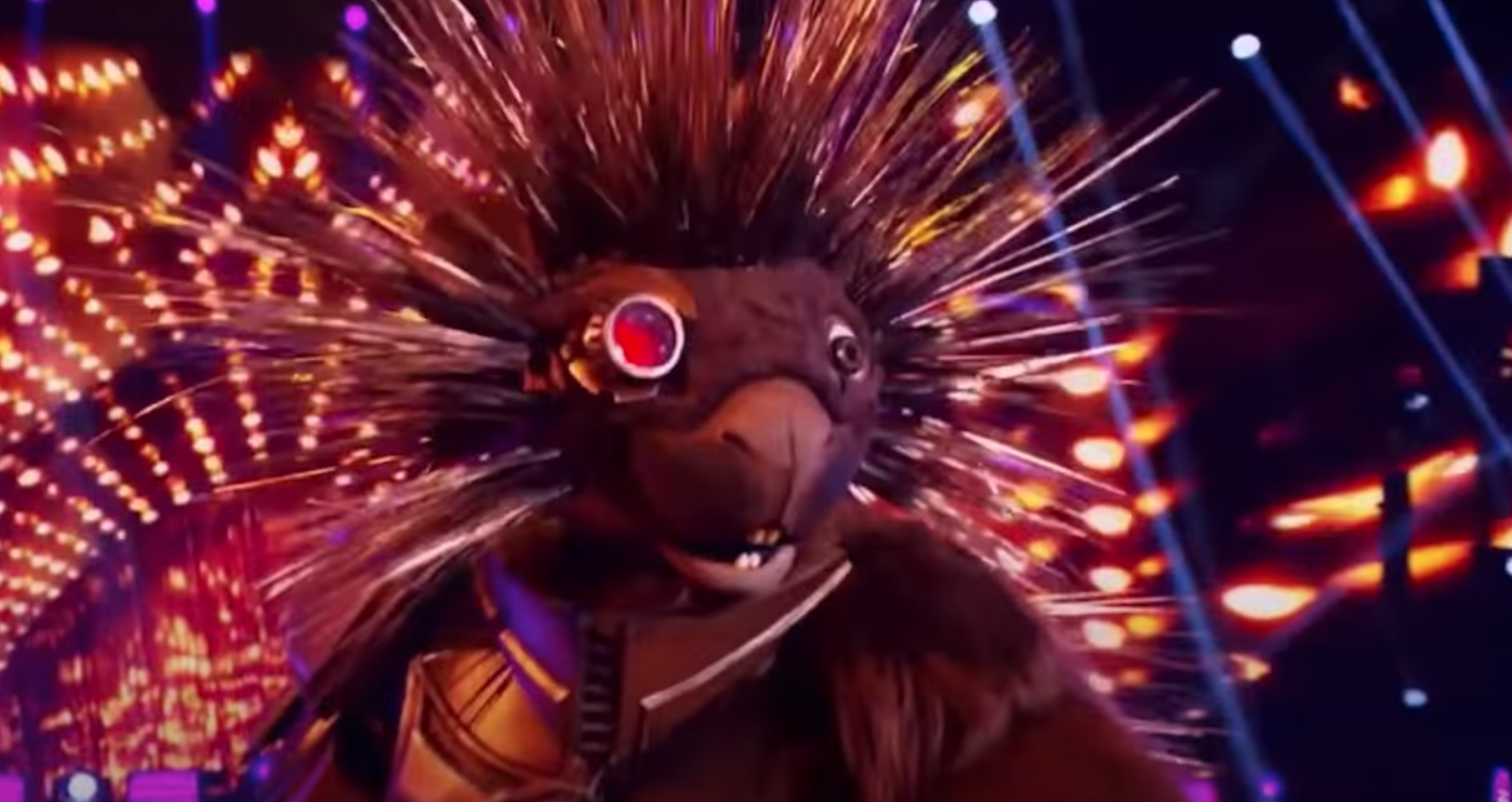 Masked Singer Porcupine from Youtube