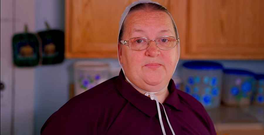Why did Mama Mary Schmucker leave Return to Amish?