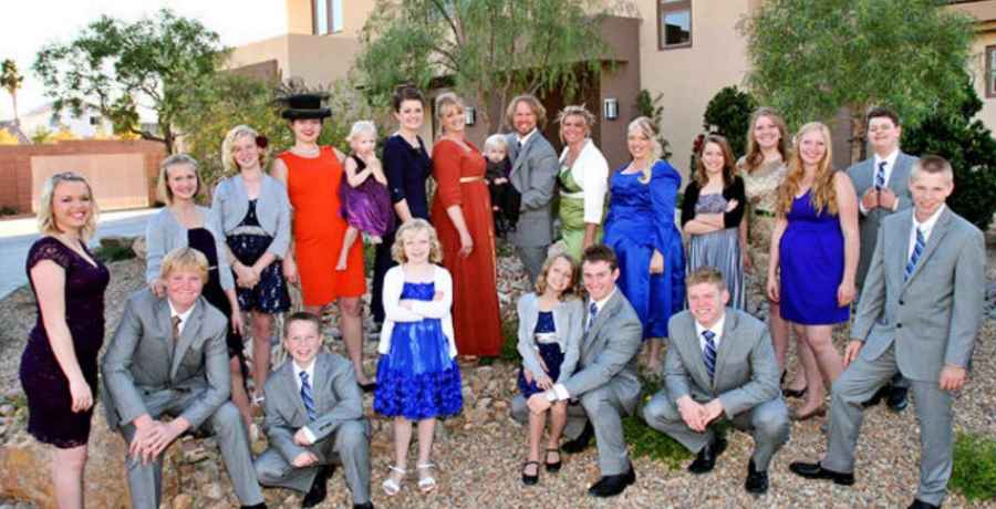 What does Sister Wives star Kody Brown contribute to the family?