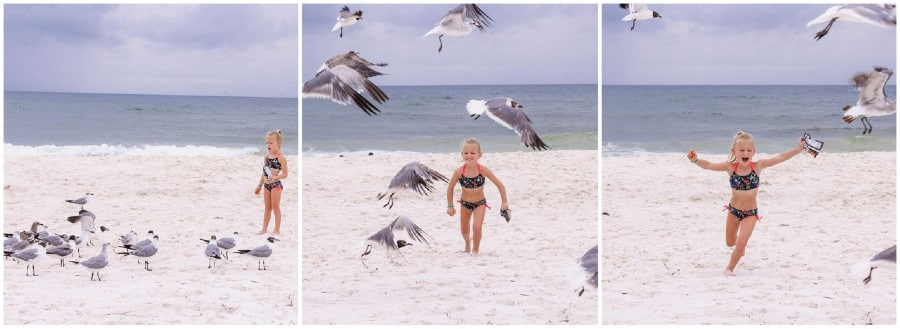 OutDaughtered Riley Busby vs. seagulls/Credit: Adam Busby/Instagram