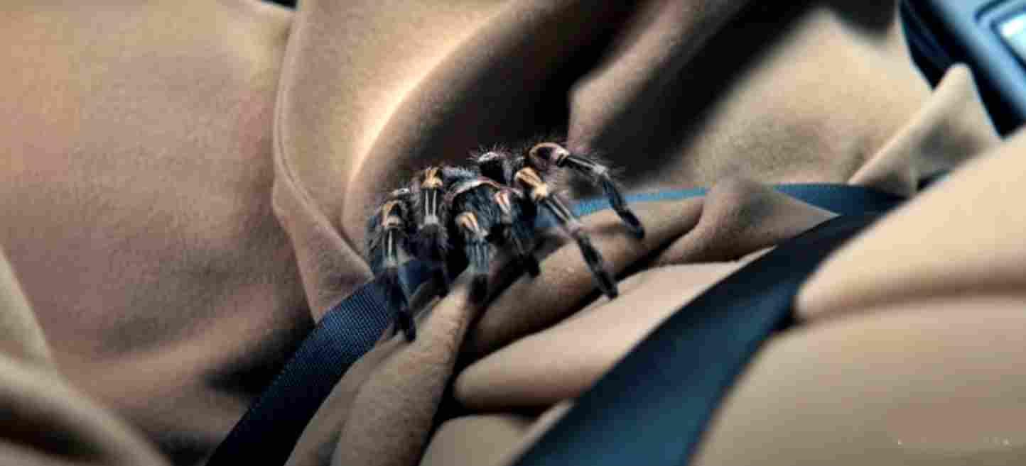 Netflix Original Horror Thriller Hypnotic will drop for Halloween